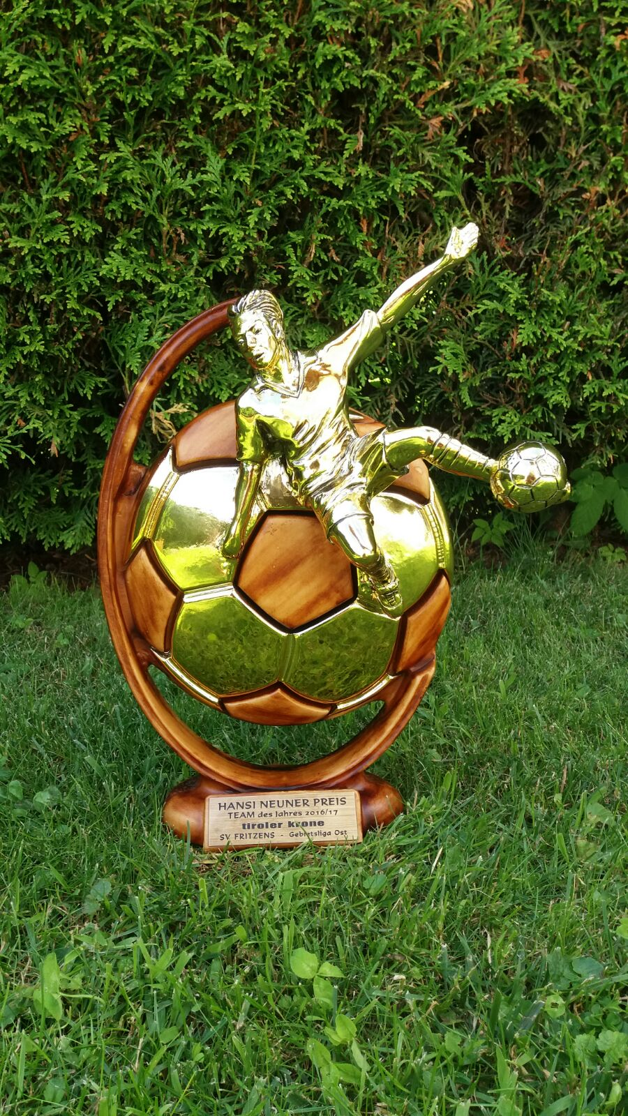 Team des Jahres - Pokal